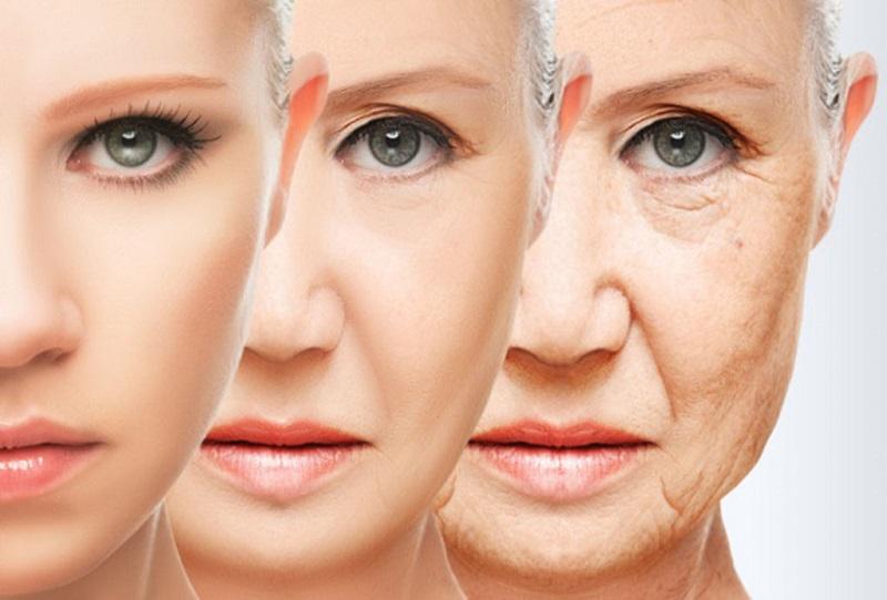 Giúp trẻ hóa da từ bên trong